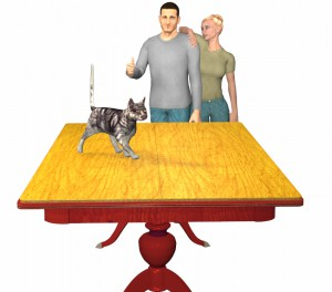 Cat walking across table pads on dining table with couple watching