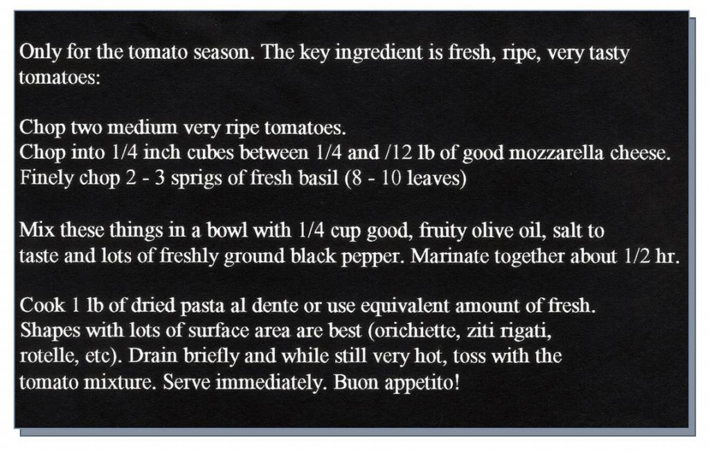 Pasta Recipe with Fresh Tomatoes and Basil